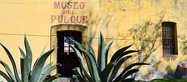 pulque_04
