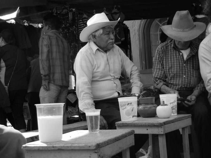 7 DATOS QUE COMPRUEBAN QUE EL PULQUE ES EL ELIXIR MEXICANO