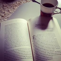 cafe_colibri_magestic_puebla